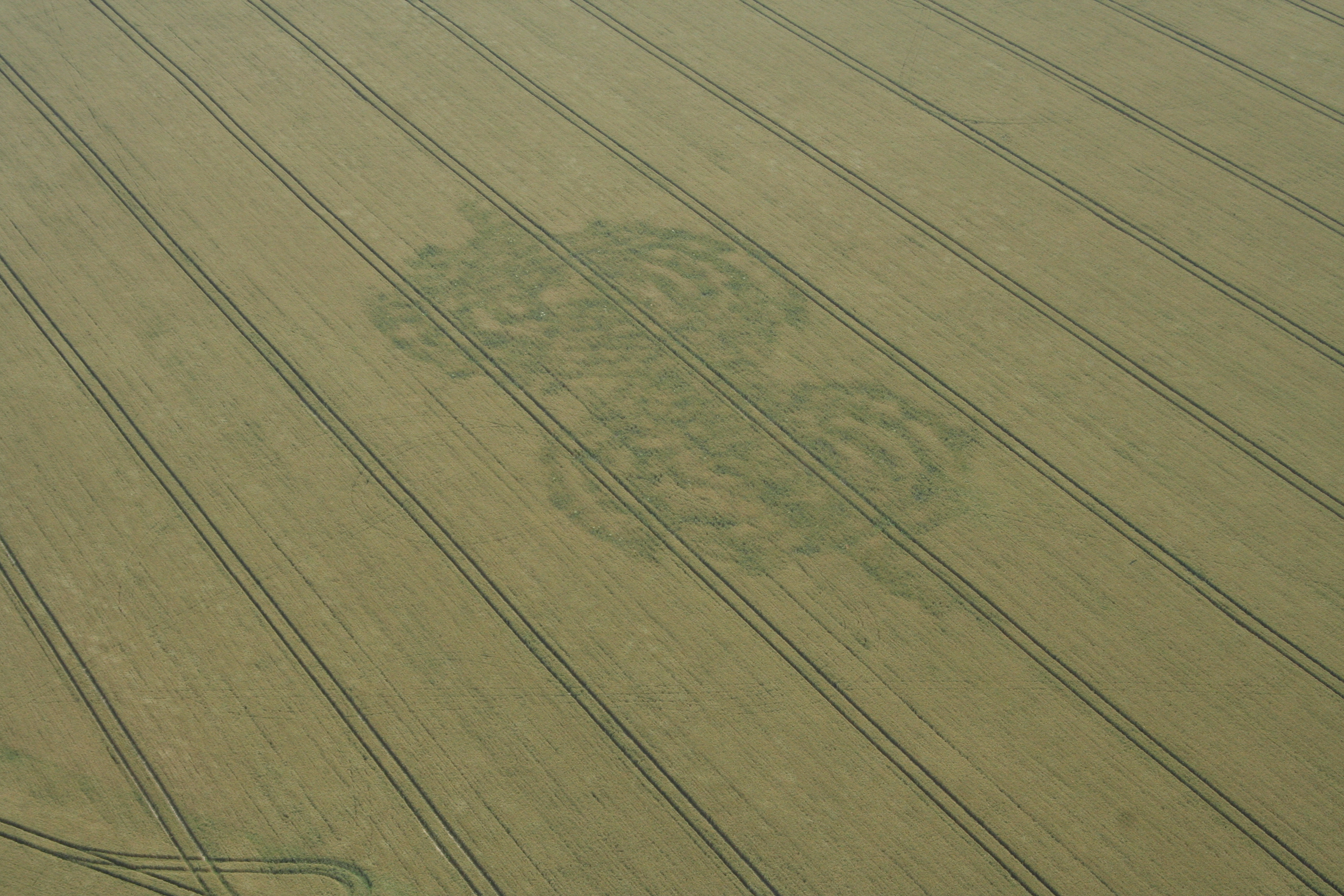 crop_circle_flight-080