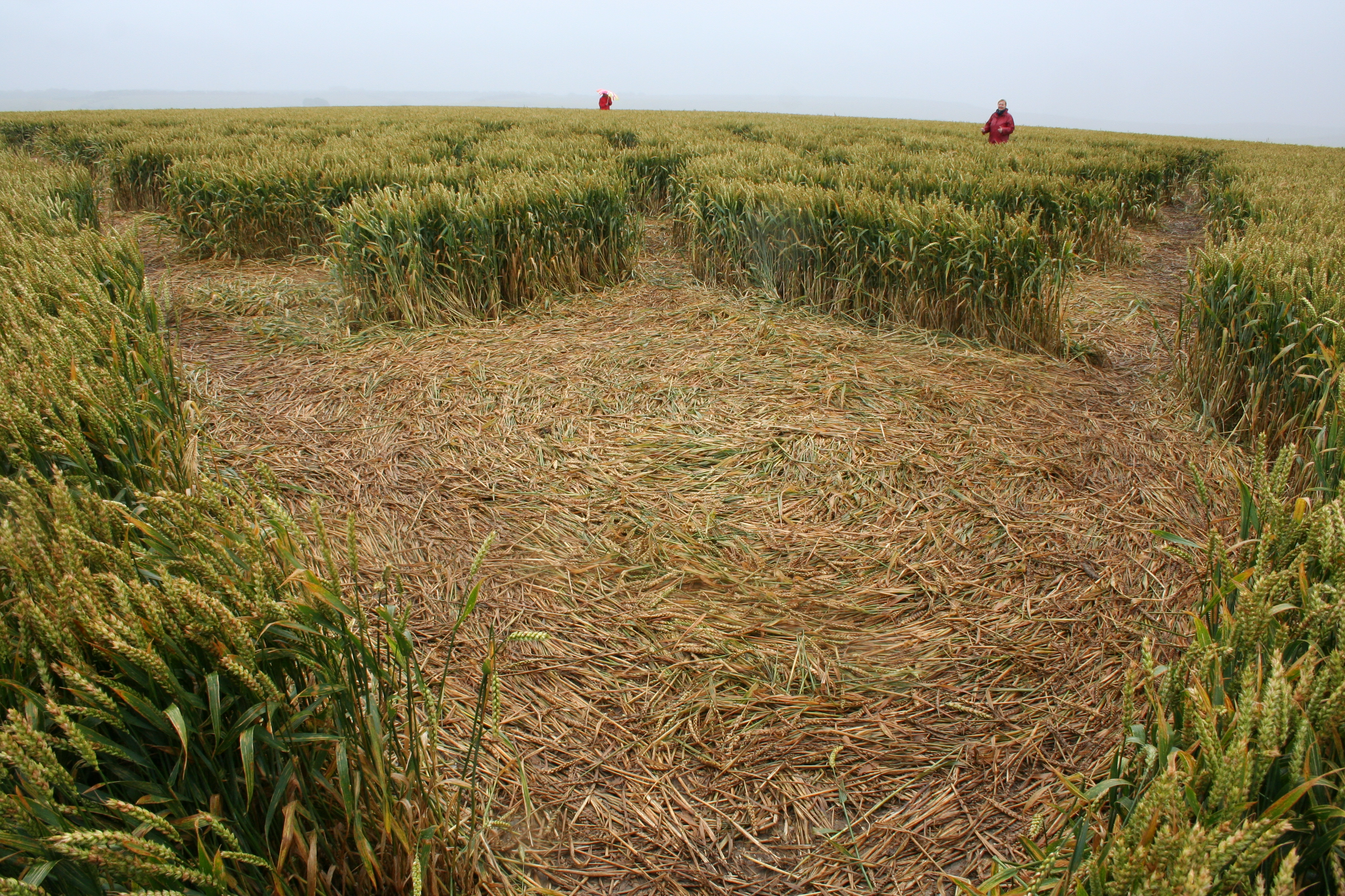 crop_circle_flight-008