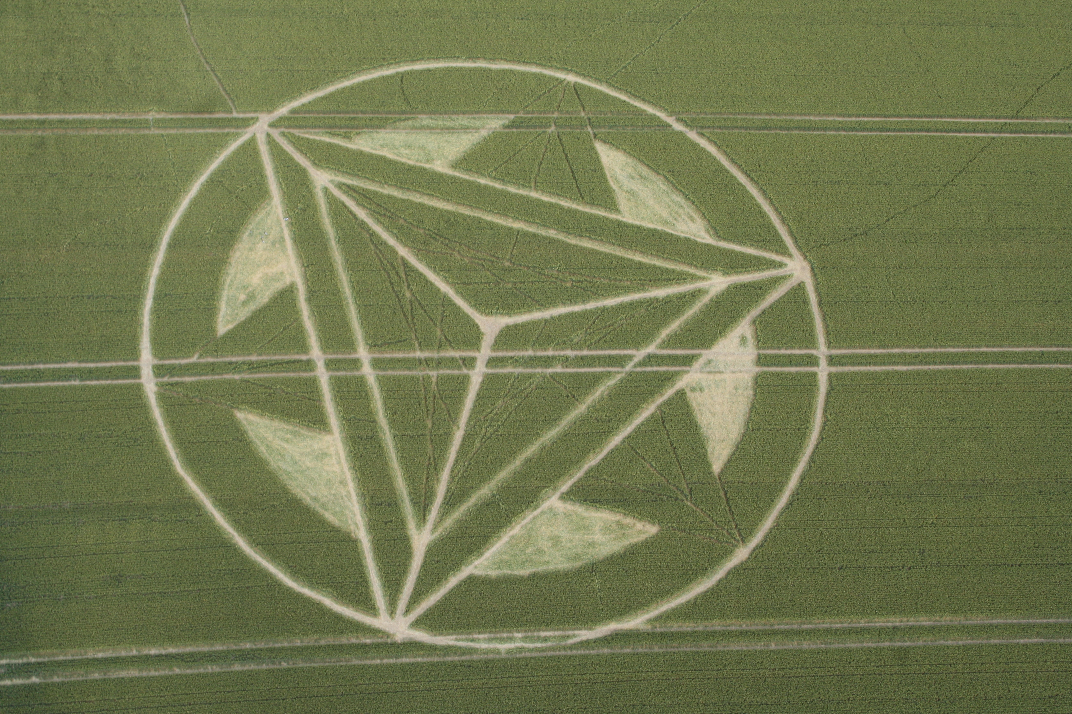 crop_circle_flight-060