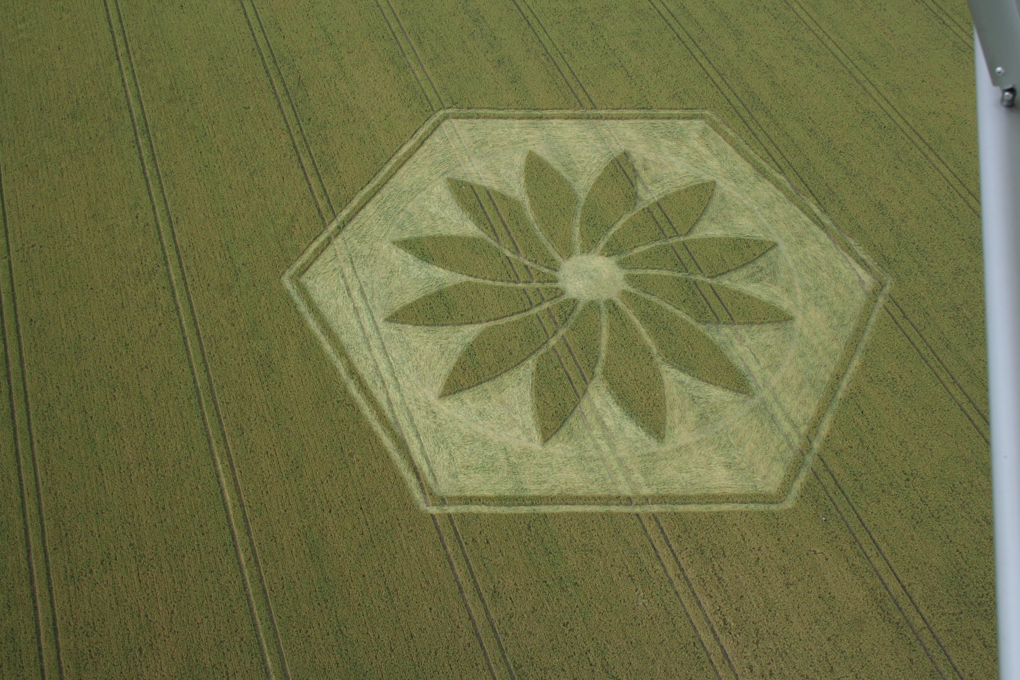 crop_circle_flight-034