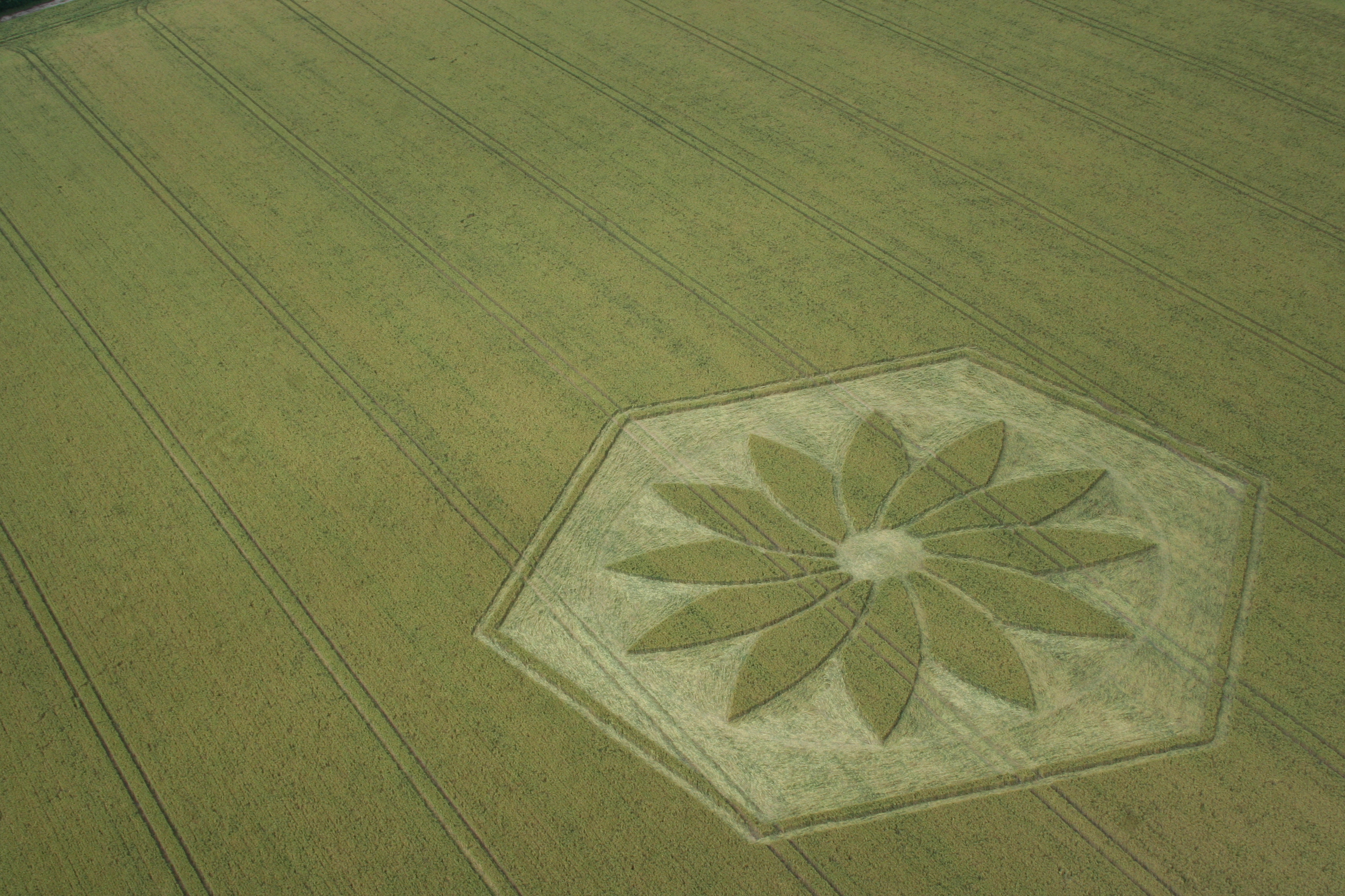 crop_circle_flight-035